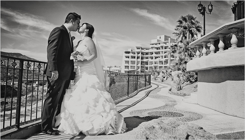 Cabo Wedding Services by Tammy Wolff at Sunset Da Mona Lisa