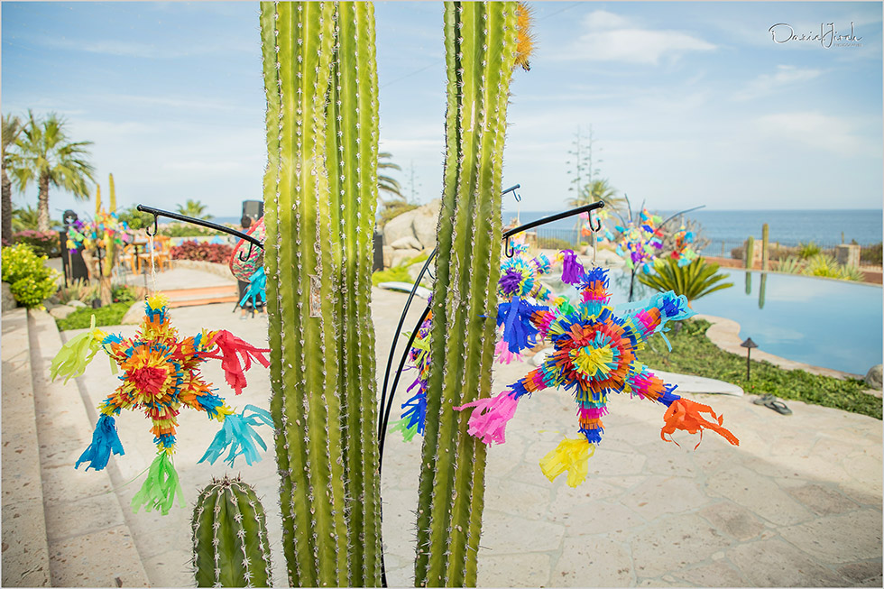 Piñatas decorate cactus at welcome party